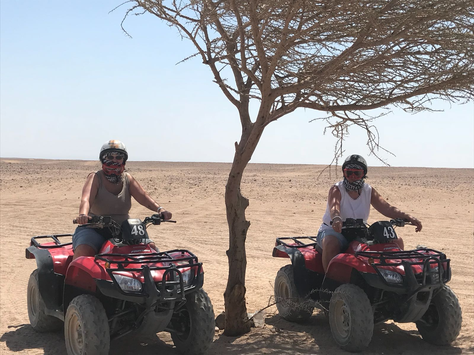 Hurghada Wüstenasusflüge & Wüstensafari