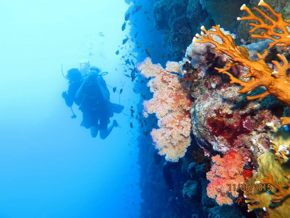 Schnuppertauchen und Schnorcheln ab  Hurghada