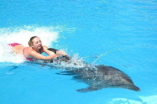 Ausflug zur Delfinshow