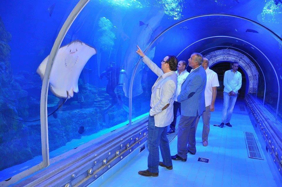 Ausflug zum Grand Aquarium