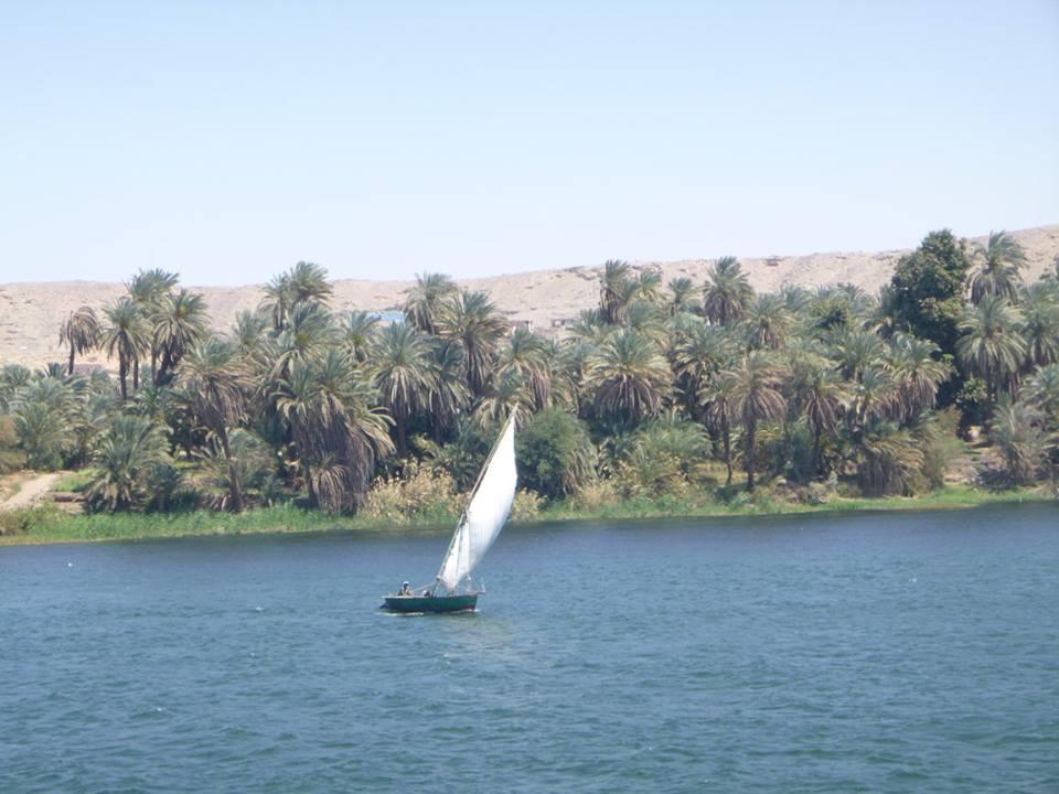 Tagesausflug nach Luxor ab Assuan Schiff oder Hotel